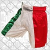 FIGHTERS - Thaibox Shorts: Italien