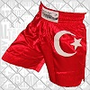 FIGHTERS - Thaibox Shorts: Türkei