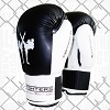 FIGHTERS - Boxhandschuhe / Competitor / Schwarz